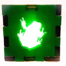 Frog LED Gift Box green